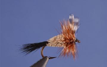 Dry Fly: Adam's Irresistable