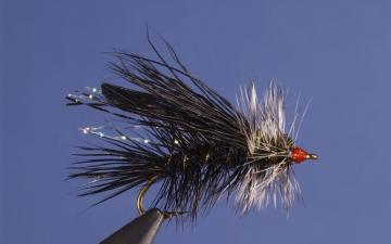Dry Fly: Blk Seducer