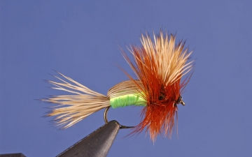 Dry Fly: Green Humpy