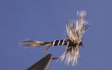 Dry Fly: Mosquito