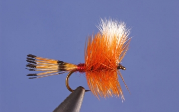 Dry Fly: Pocket Water