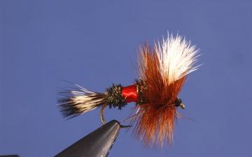 Dry Fly: Royal Wulff