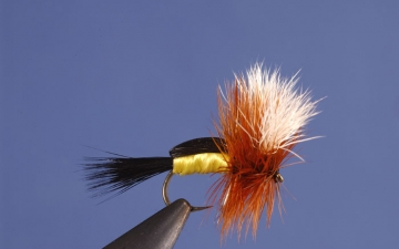 Dry Fly: Yellow Royal Humpy