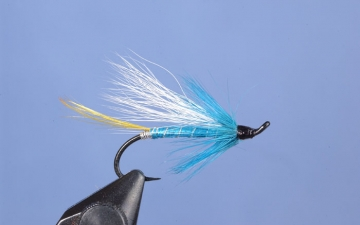 Hairwing: Big Intervale Blue