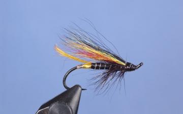 Hairwing: Black Dose