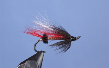 Hairwing: Cains Copper