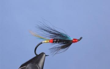 Hairwing: Nighthawk