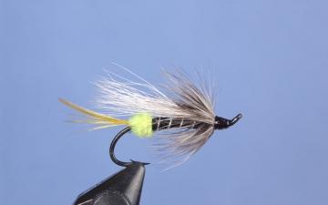 Hairwing: Pelletier