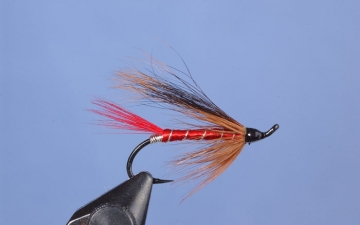 Hairwing: Red Abbey