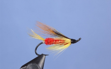 Hairwing: Ross Special