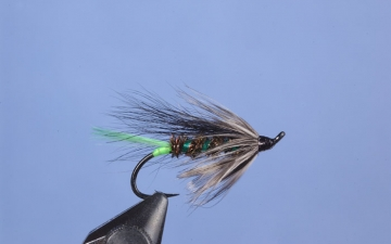 Hairwing: Ruelland Special