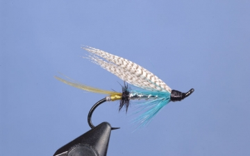 Hairwing: Silver Blue