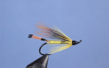 Hairwing: Tobique Special