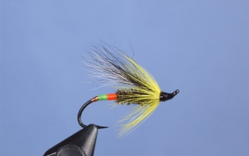 Hairwing: Will Taylor Special