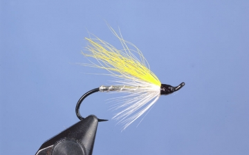 Hairwing: Yellow Calftail