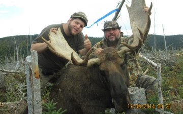 Hunter's Moose