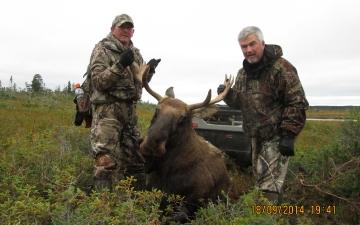 Moose Hunt (2014)