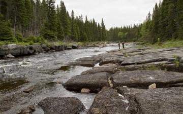 Fishing at Beaver Brook