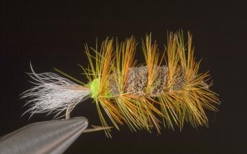 Bug: Natural Bug Orange