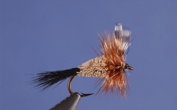 Dry Fly: Adam's Irresistable