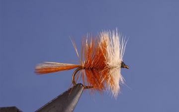 Dry Fly: Brn Bivisble