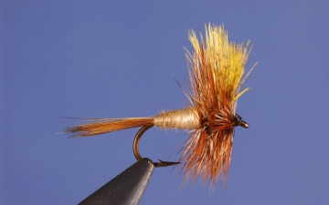 Dry Fly: Flick's March Brown