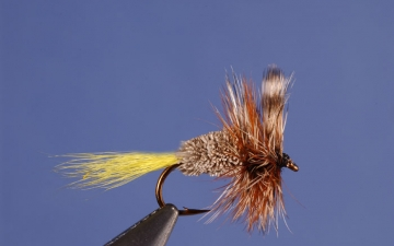 Dry Fly: Rat Face Irresistable