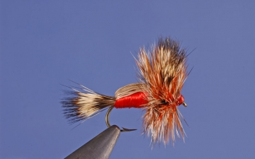 Dry Fly: Red Humpy