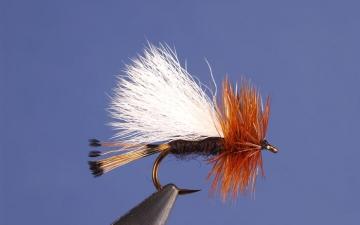 Dry Fly: Rio Grande Trude