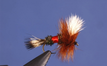 Dry Fly: Royal Wulff