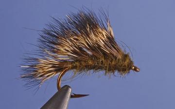 Dry Fly: Sedgehog Olive