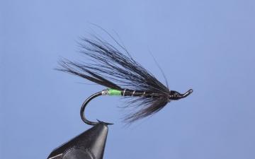 Hairwing: Blk Bear Green Butt