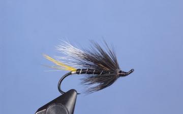 Hairwing: Black Cosselboom