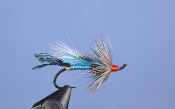 Hairwing: Blue Rat