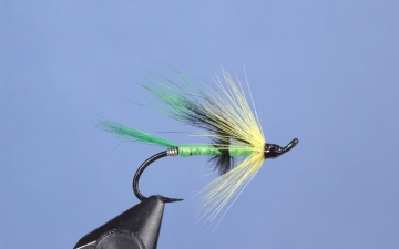 Hairwing: Coburn Special