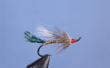 Hairwing: Copper Rat