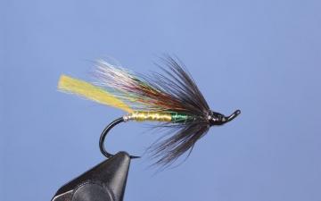 Hairwing: Fraser Special