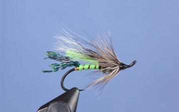 Hairwing: Green Rat