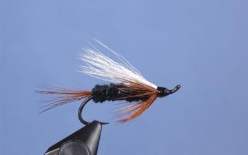 Hairwing: Pass Lake