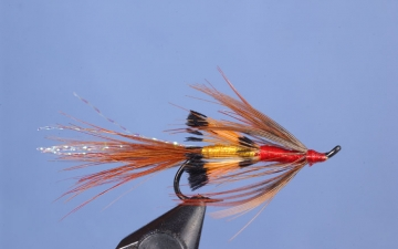Hairwing: Tippet Shrimp
