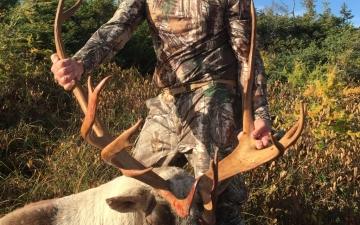 2017 Hunt. Just harvested. Successful hunter